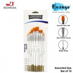 Bomeijia Artist Nylon Painting Brush Set (Set of 10 - Assorted Tips: Liner, Round, Flat, Chisel, Filbert, Angular, Fan Tip)