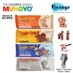 Mungyo Sculpt Dry Modeling Air Dry Clay/Paper Clay 500G - (White / Terracotta Brown / Peach Skin / Stone Grey Colour)